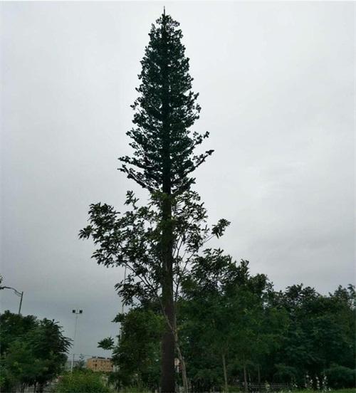 仿生树通讯塔