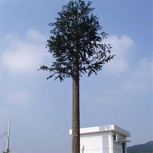 仿生树信号塔的作用