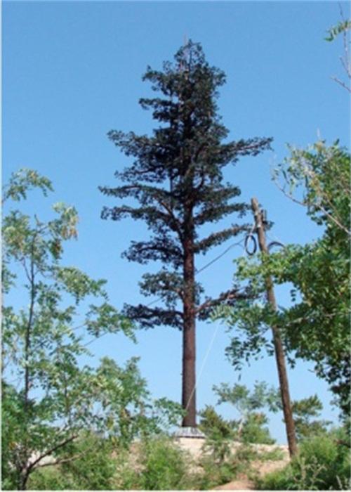 通讯铁塔仿生树