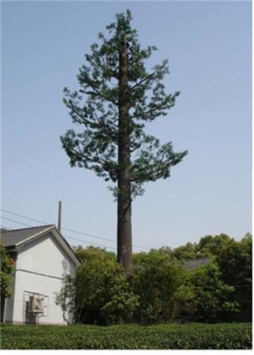 仿生树信号塔