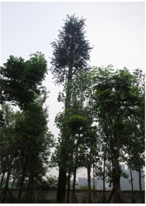 通讯塔仿生树