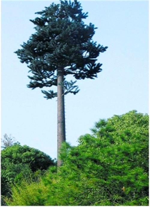 景区仿生树塔
